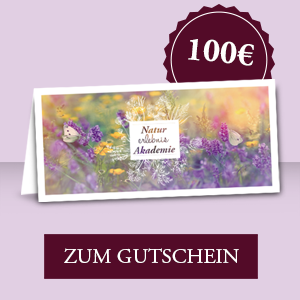 Gutschein 100,00 € zum Download