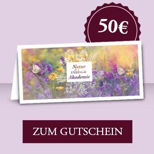 Gutschein 50,00 € zum Download