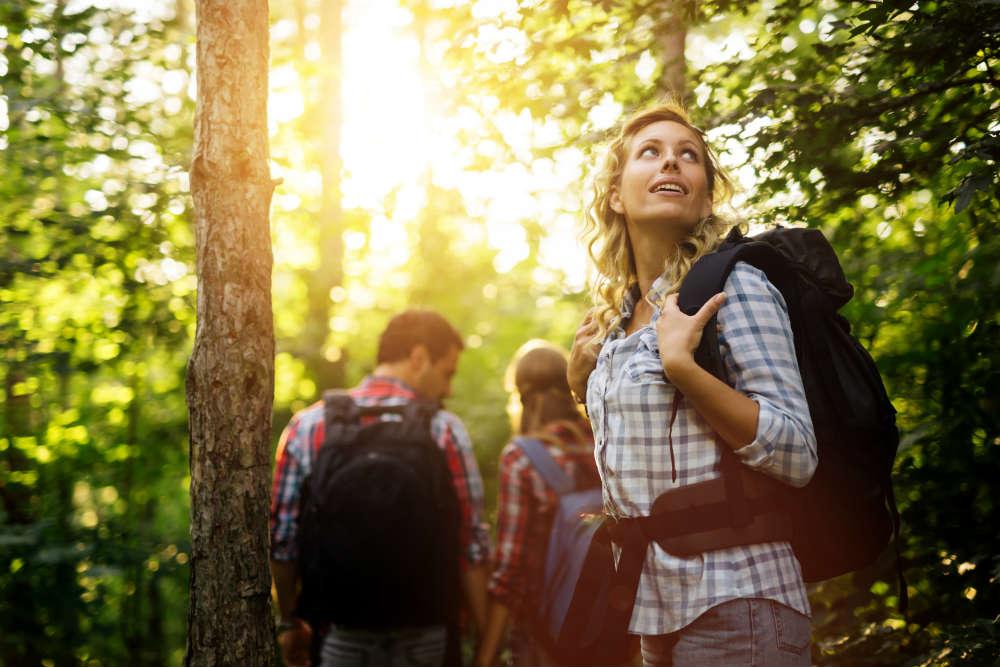 Naturführung: Mein Freund der Baum