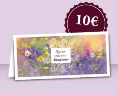 Gutschein 10,00 € zum Download